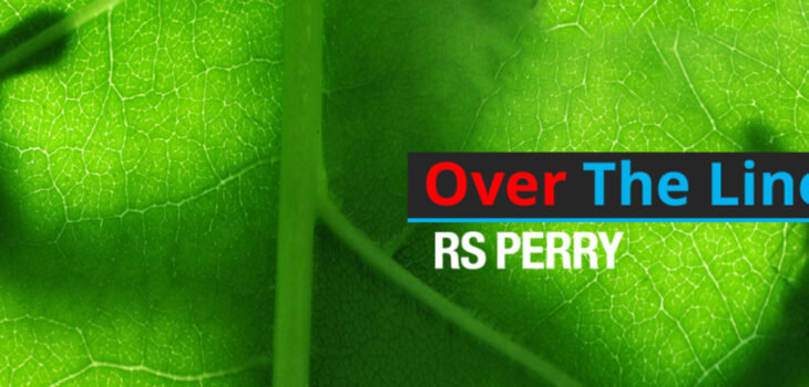 Over The Line RS Perry novel with gecko cover banner
